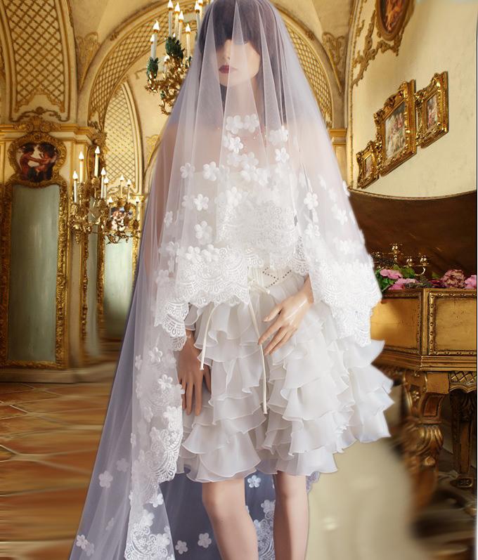 Gorgeous Lace Flower Design Long Bridal Veil Wedding Dress