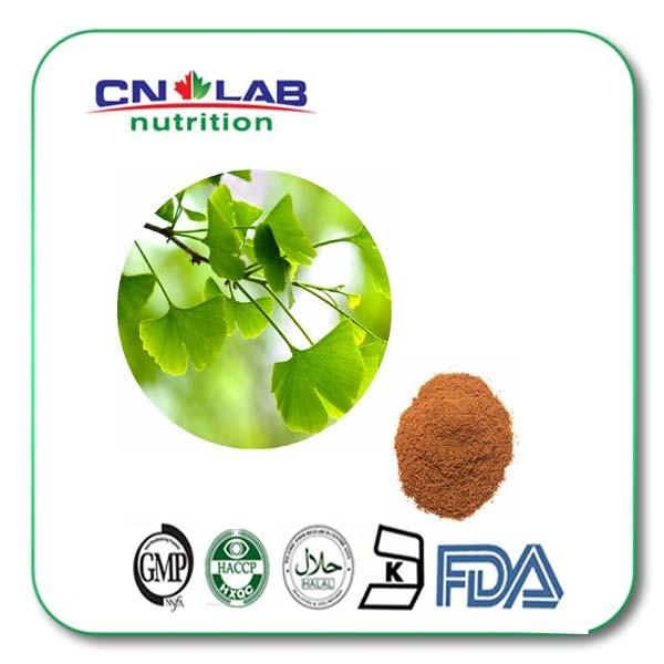 hot selling 500g/lot 100% pure Natural Ginkgo Biloba Extract Powder 50:1