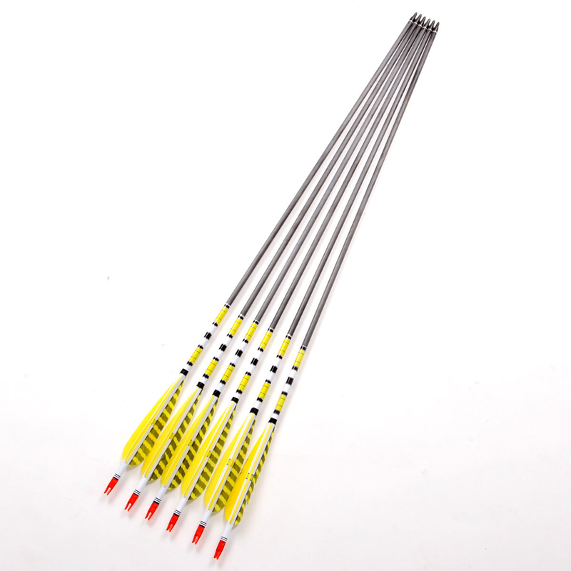 Hot Sale 80cm Craftsman Handmade Carbon Shaft Archery Arrows 6pcs pack Gold Turkey Feather Arrows For