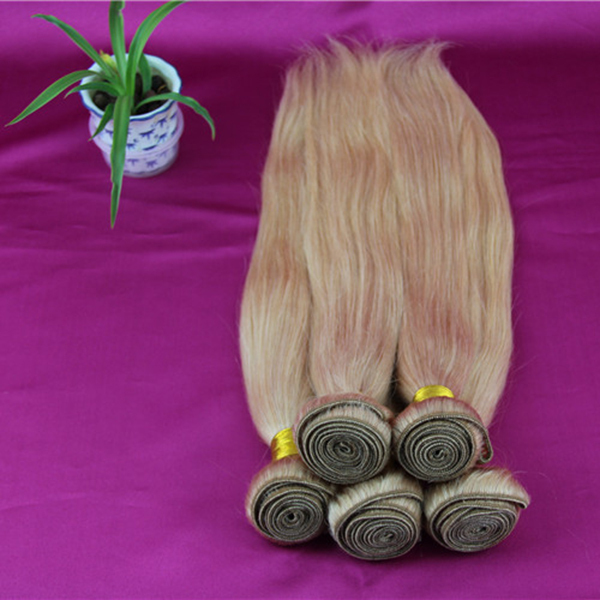 Malaysian virgin hair straight cheap straight human hair bundles 4 pcs lot #27 honey blonde malaysian straight hair<br><br>Aliexpress
