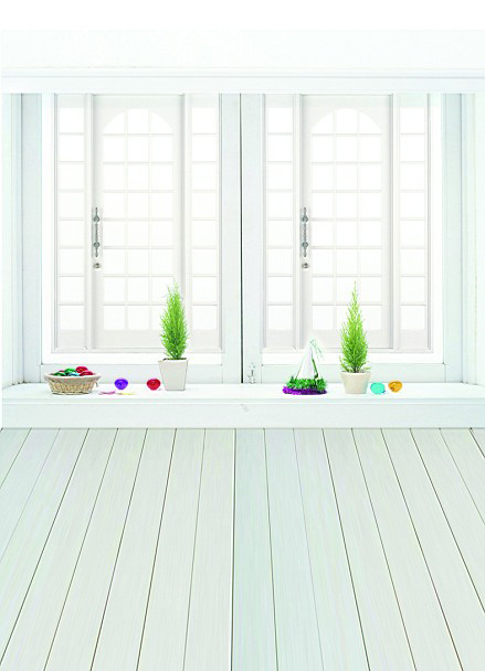 600CM*300CM backgrounds Vast interior house large windows as simple and clean photo LK 1180(China (Mainland))
