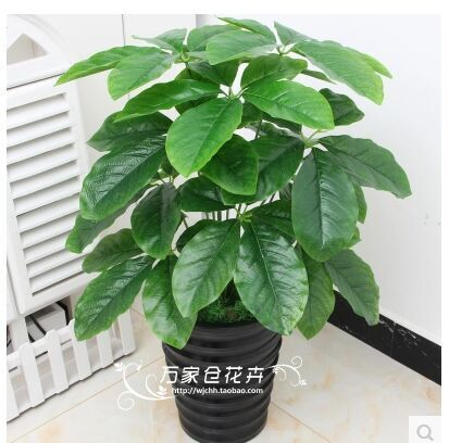 ulation tree plant fake plastic flowers bonsai pot sitting room adornment is put thousands of miles of 60 centimeters 12 leaves(China (Mainland))