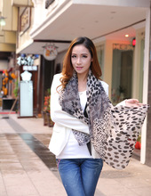 Cashmere chiffon garden warm winter scarves best matching accessories