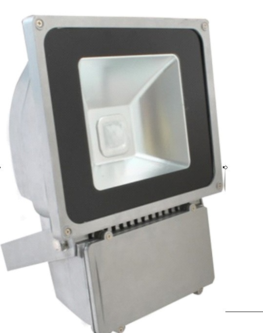 D50W outdoor floodlight lamp light bidding square street advertising warehouse courtyarlamps for illumination(China (Mainland))