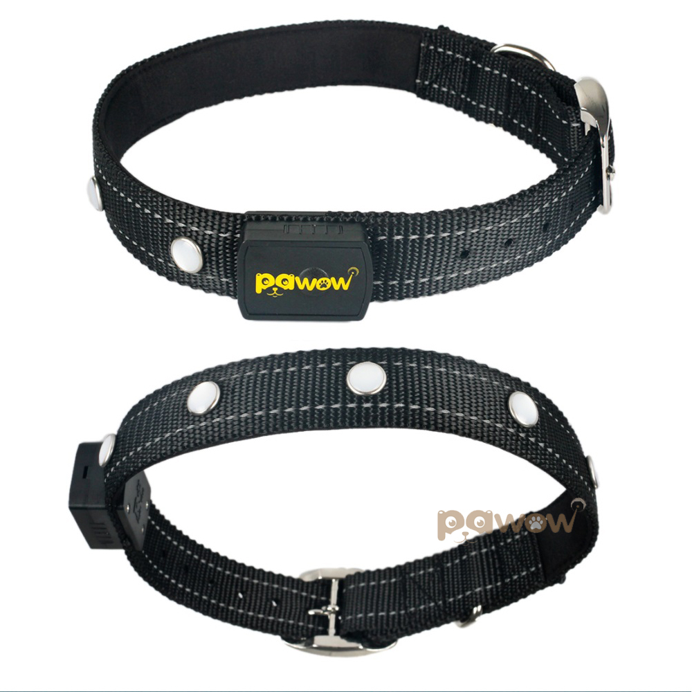 Pawow Nylon & Metal Durable Adjustable Night Safety Flashing LED Light up Dog Collar , BLACK(China (Mainland))