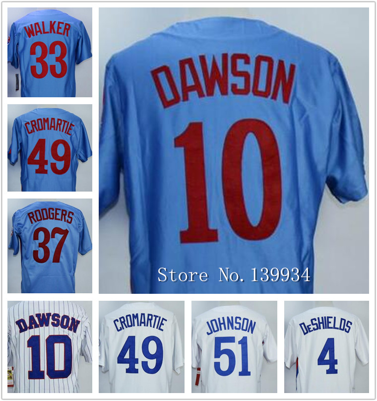 Men's 33 Larry Walker 4 Delino Deshields 10 Andre Dawson 51 Randy Johnson Throwback Blue white pinstripe jerseys(China (Mainland))