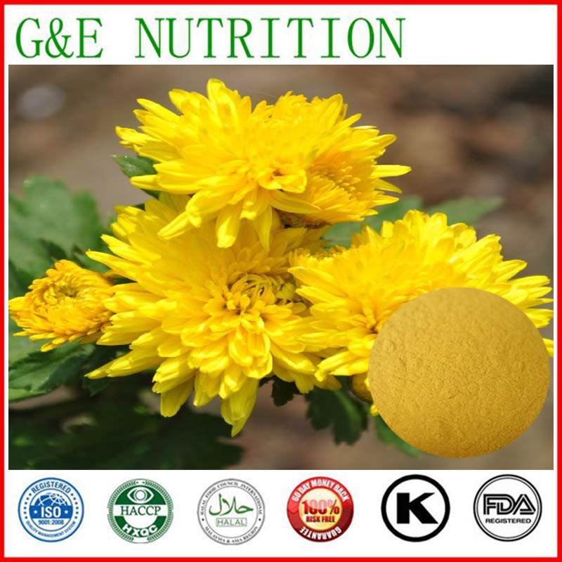 600g Factory Price Chrysanthemum  Extract with free shipping<br><br>Aliexpress