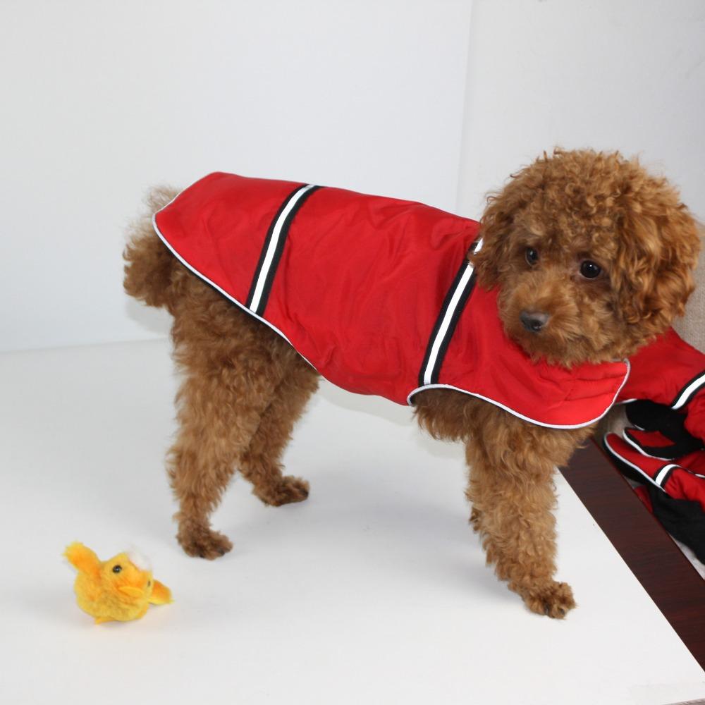Dog Snowsuit Pattern