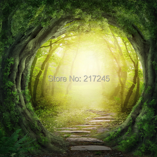 Cinderella Forest Art Fabric Photography Backdrop Scenery Custom Photo Portrait Studios backgrounds D-3267 - Backdrops store