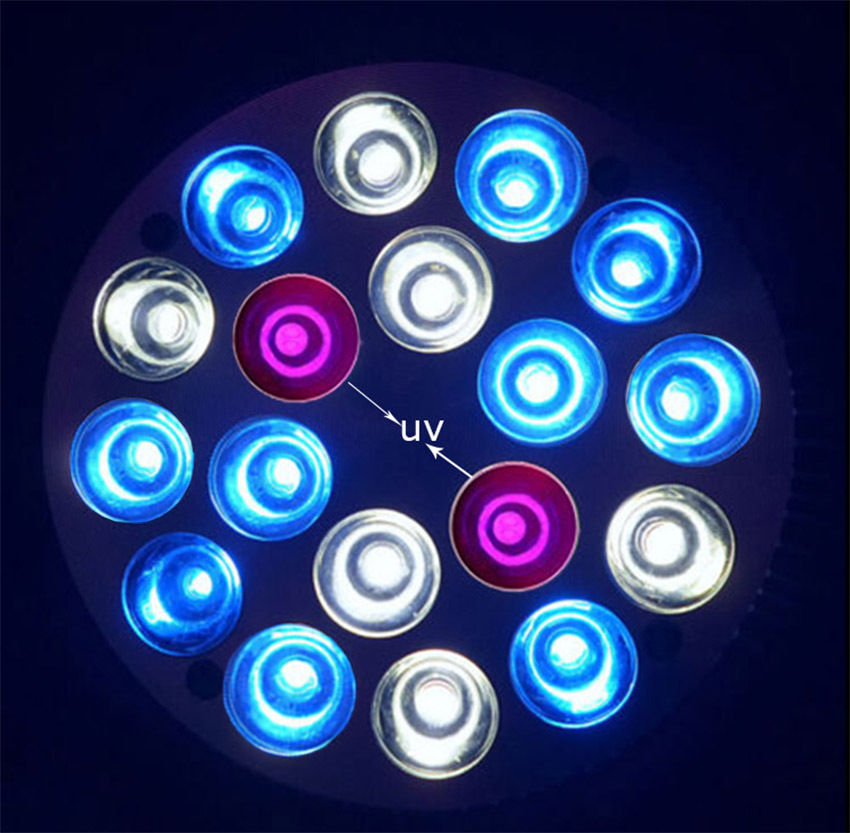 E27 54W 2UV 10Blue 6White LED Coral Reef Grow Light High Power Fish Tank bulb Lamp LED Aquarium Light(China (Mainland))