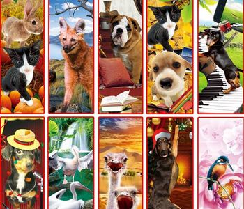 lenticular PET bookmark 3D cartoon effect with tassle and opp bag 30 designs mixed   free shipping wholesale hotsale