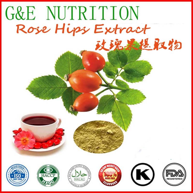 GMP Supplier Bottom Price Rose Hip Extract 600g<br><br>Aliexpress