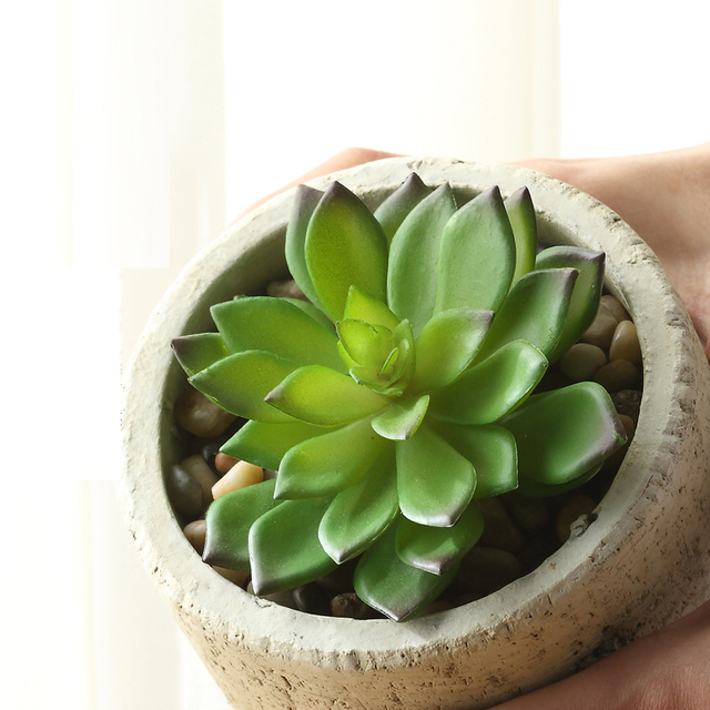 k nstliche sukkulenten k nstliche blumen mini pflanzen k nstliche blumen bonsai in ber kaufen 3. Black Bedroom Furniture Sets. Home Design Ideas