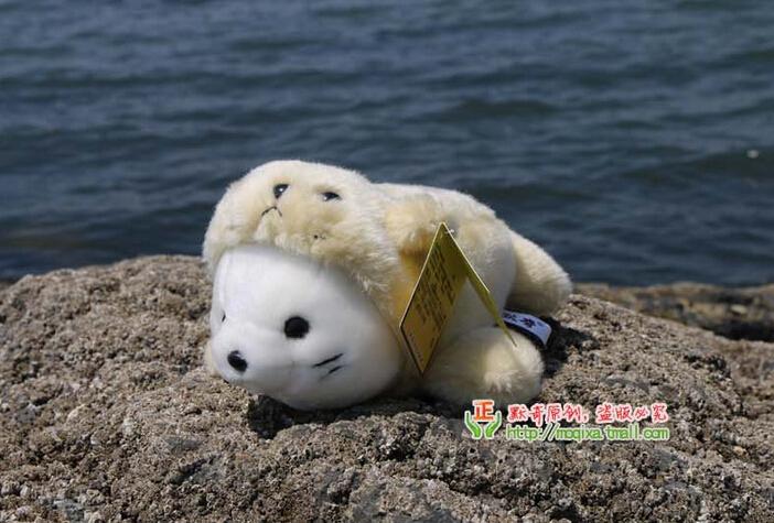 cute baby ocean animals www pixshark com images golden harp clipart harp clip art black