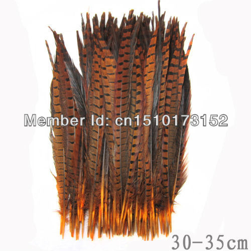 10s Orange Dyed Loose pheasant Tail feathers 12-14inches/30-35cm Craft Supplies OH1-7 - TiTi Feather Market store