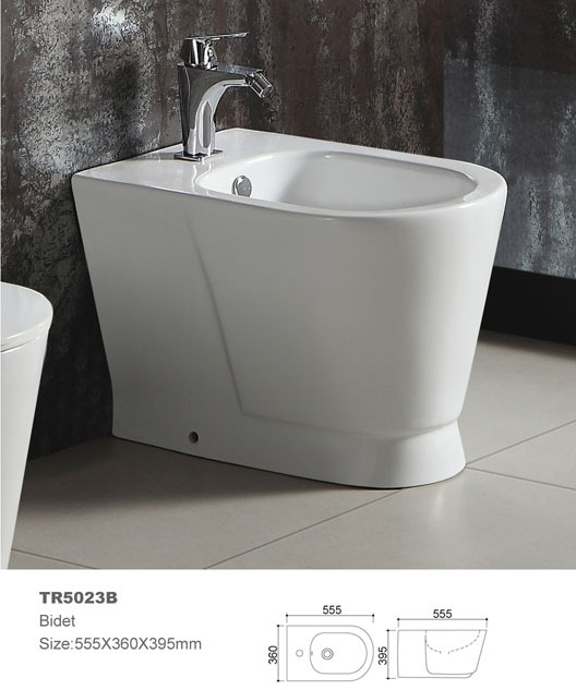 Bidet toilet shower bidet ceramic bidet wall hung mounted bidet toilet bathroom furniture not included faucet and fittings(China (Mainland))