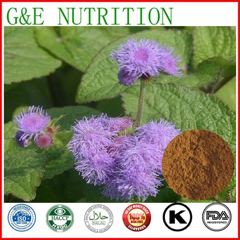 Agastache rugosa extract/Herba Pogostemonis P.E  600g<br><br>Aliexpress