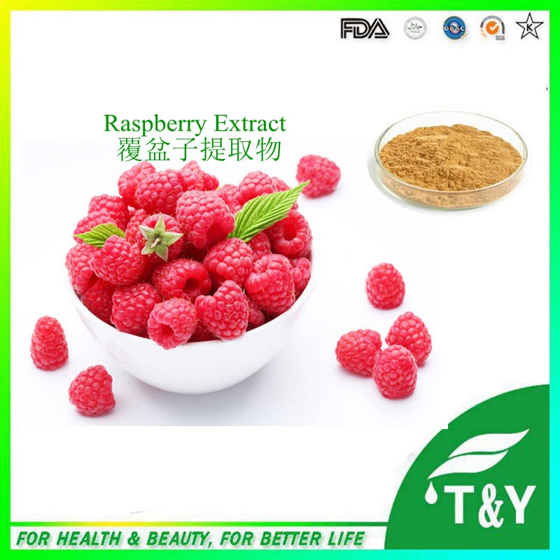 100% Natural Raspberry Extract, Raspberry Extract Powder, Raspberry Ketone 600g/lot