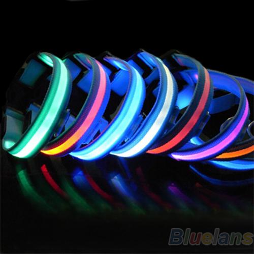 New Glow LED Dog Puppy Pet Night Safety Collar Flashing Light Up Collar Blue Nylon 7 Colors 0HH4(China (Mainland))