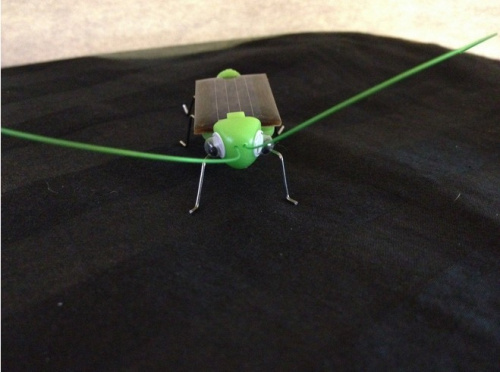 Free Shipping Solar Power Energy Green Grasshopper Insect Bug Locust Toy(China (Mainland))