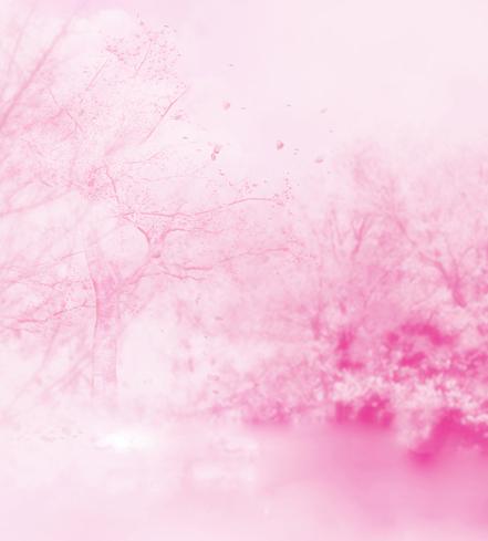 Фотография 300*600cm(10ft*20ft) newborn photography props Pink hazy dream photography backdrops