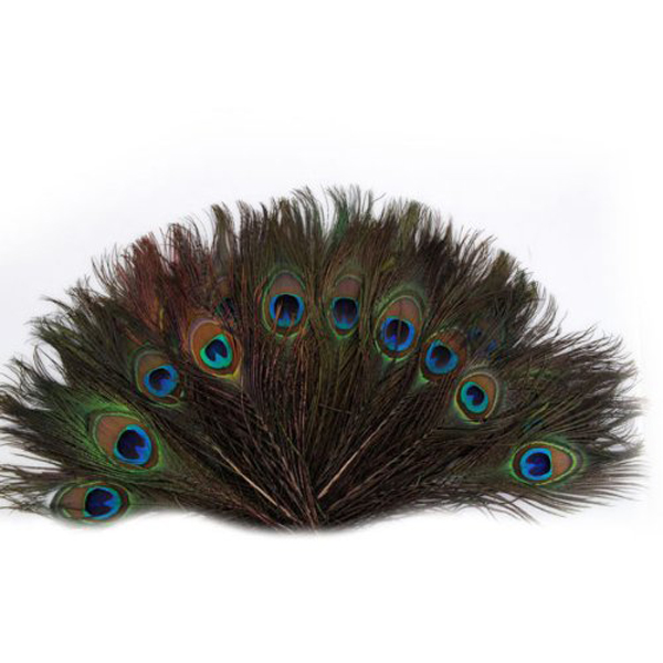 100pcs 25-30cm Beautiful Natural Peacock Tail Feathers Eyes Feathers Decorations for Craft / Art / Dress / Hats / Bridal Costume(China (Mainland))