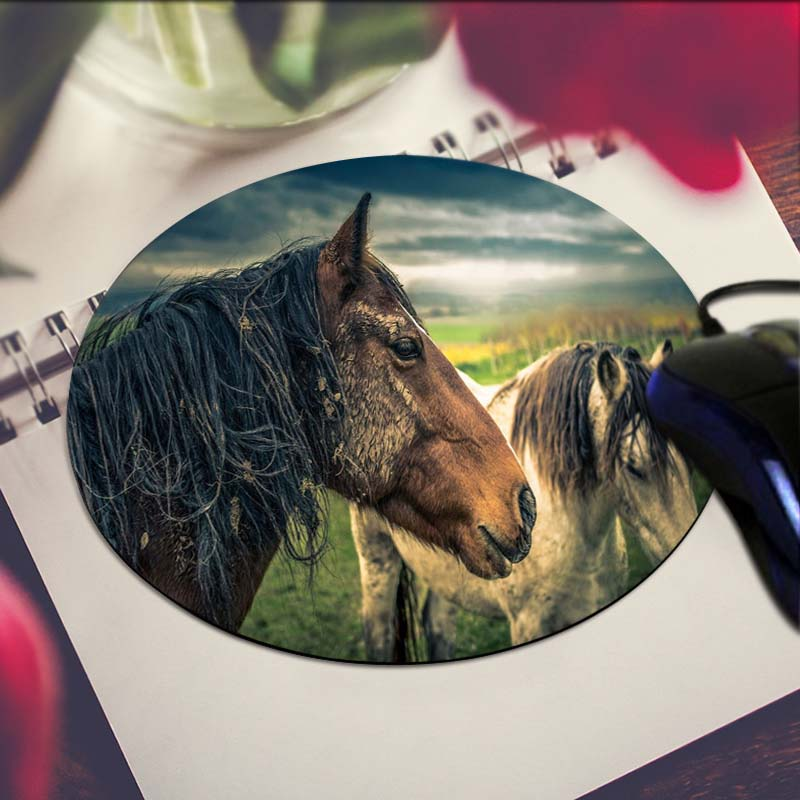 Dirty Horse Stock Images, Royalty-Free Images &- Vectors | Shutterstock