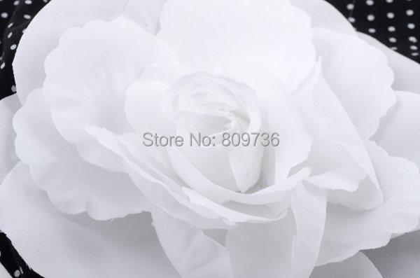 CD03006C_1.jpg