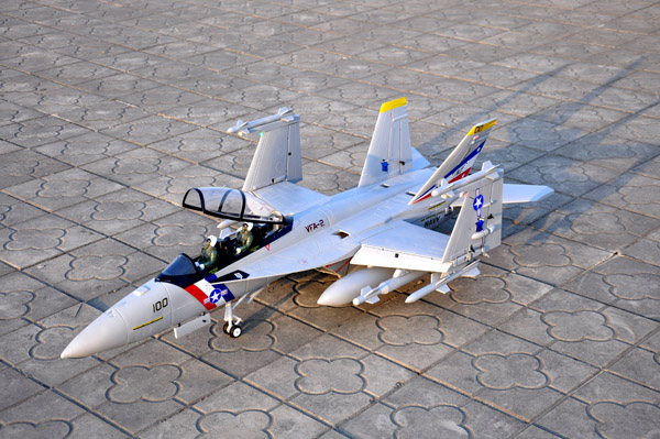 Sky Flight 12 CH 2.4GHz F/A-18F Super Hornet PNP and KIT 3D Vector Thrust Aerobatic Electric Ducted Fan RC Fighter Jet(China (Mainland))