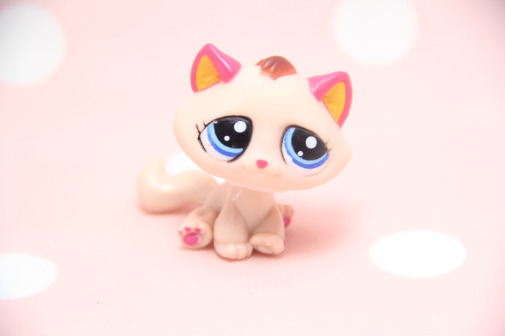Felisha Rose Short Hair Cat Hand Painted Custom Littlest Pet Shop(China (Mainland))