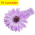 Girl's Head Accessories hairband Baby Headband flower princess headband elastic flower hairband  #2B2264 10pcs/lot(4 colors)