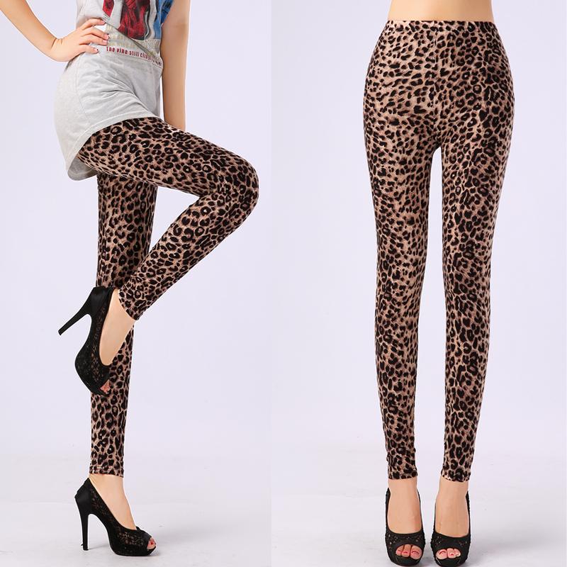 Купить Одежда и аксессуары  5504 Wholesale Microfiber Material Plus Size Sexy Leopard Leggings for Women Free Shipping Spring 2015 None