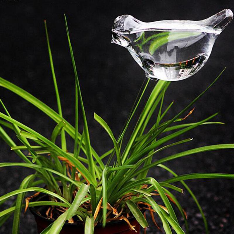 Bird Shape Design Hand Blown Clear Glass Self Watering mini Globes Small Plant Watering Bulbs Aqua cute water W45(China (Mainland))