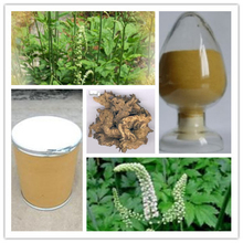 best price 2.5% Triterpenoid saponins Black Cohosh Extract powder(China (Mainland))
