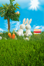 5feet*7feet(150cm*215cm) Radish Rabbit Trees photography backdrops photography background photo studio backdrop