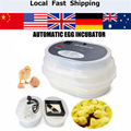 9 Egg Digital Automatic Egg Turning Incubators Hatcher brooder poultry Chicken Egg Incubator Chocadeira