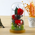 The Little Prince Glass Cover Preserved Rose Flower For Home Garden Wedding Decoration Crafts