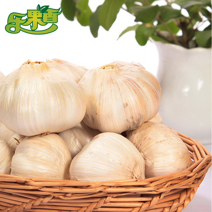 1000g Garlic allium sativum China Shandong Specialty Heart Healthy Fight Bacteria and Virus Treat Skin Infections free shipping<br><br>Aliexpress