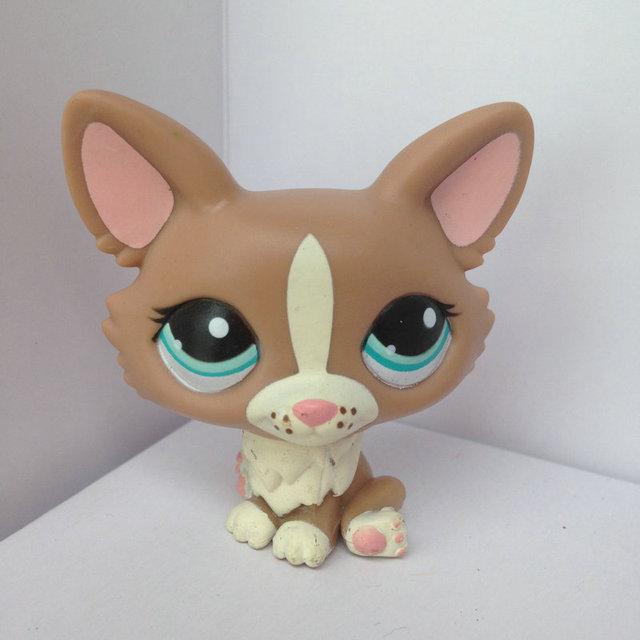 Зоомагазин кукла животных LPS рисунок ребенка игрушки гриль собака DWA108