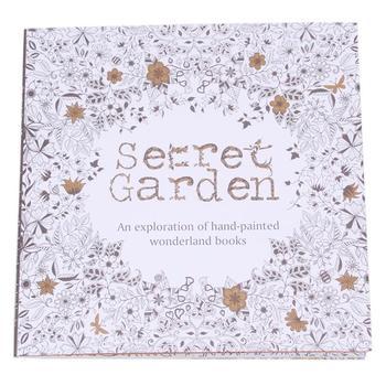 Секретный сад книжка-раскраска английская версия рисунок книга расслабиться сами охота за сокровищами граффити книги бесплатная доставка