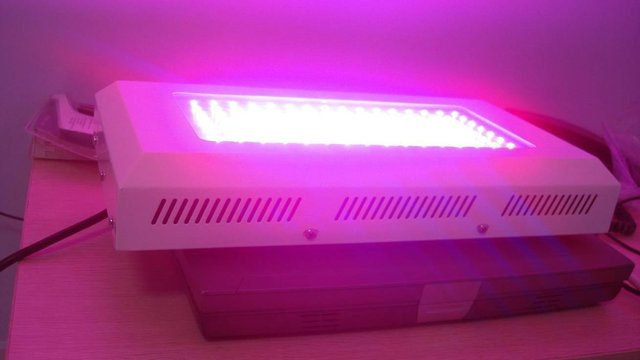 5pcs 120W LED grow lights to James from Ray