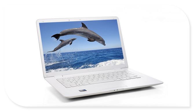 14inch laptop computer Intel Celeron J1800 dual core ultra thin notebook computer 4GB DDR3 RAM 500GB webcam WIFI(China (Mainland))