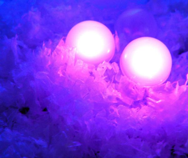 Mini Party Lights (2).jpg