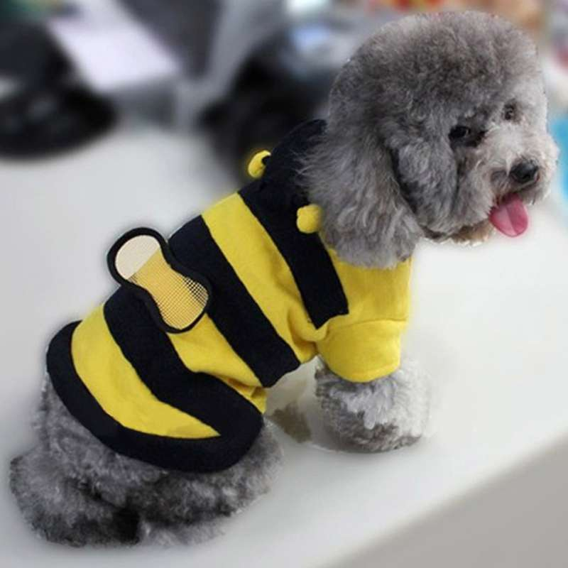 New Cute Dimensional bee cotton Pet Dogs Coat Free Shipping Dogs Clothes new clothing for dog Y50*MHM468#M2(China (Mainland))