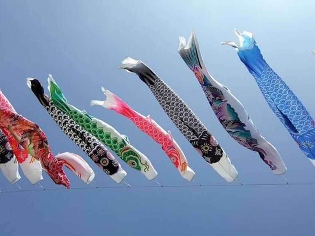 70cm/ 27.6 inch Japanese Windsock Carp Flag Koi Nobori Sailfish Boy's Day Decor 5 Colors/ 1 Set