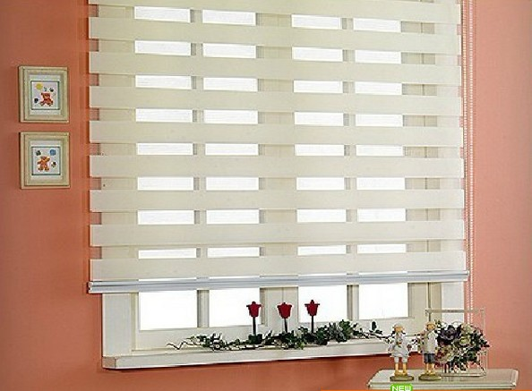 Popular zebra blinds/double-layer roller blinds/curtain fabric curtain window curtain/electric blinds - N&E Window Decoration store