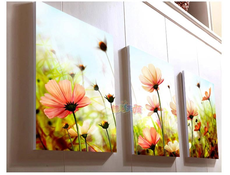 Boutique diy digital painting the living room painted floral landscape significantly large painting digital painting Gesang(China (Mainland))