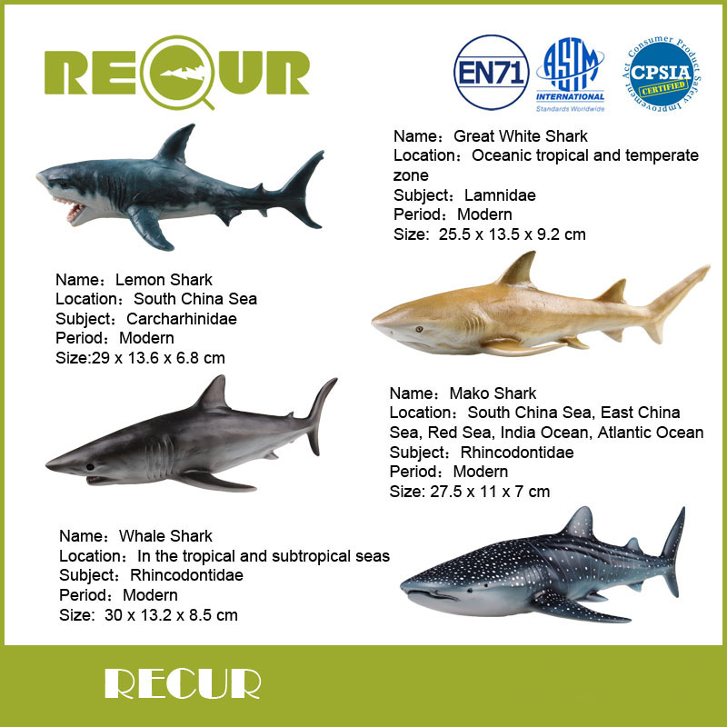 4 pcs/set Recur Shark Series Toy Highly Detail Soft PVC Hand Painted Marine life Model Gift Collection For Kid's Early Education(China (Mainland))