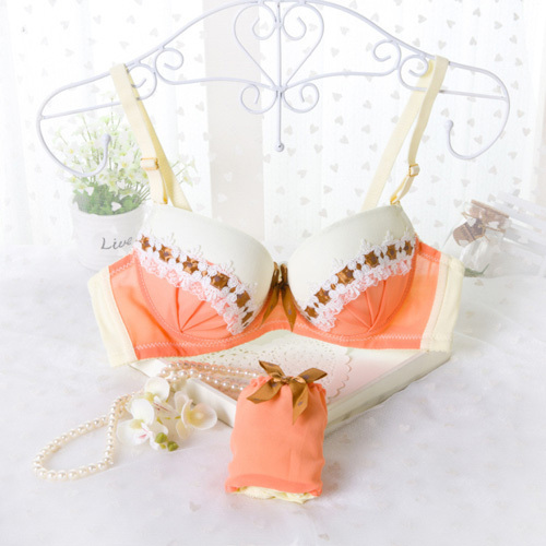 2015 New Sweet Cute Luxury Top Quality Cotton Bra Set Fashion Sexy adjustment Underwear Bras For Young girl Women Student(China (Mainland))
