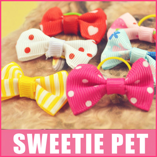 Free Shipping 3pair/lot Rubber band bow head flower pet dog pet accessories pet rubber band hair accessories dog hairpin(China (Mainland))